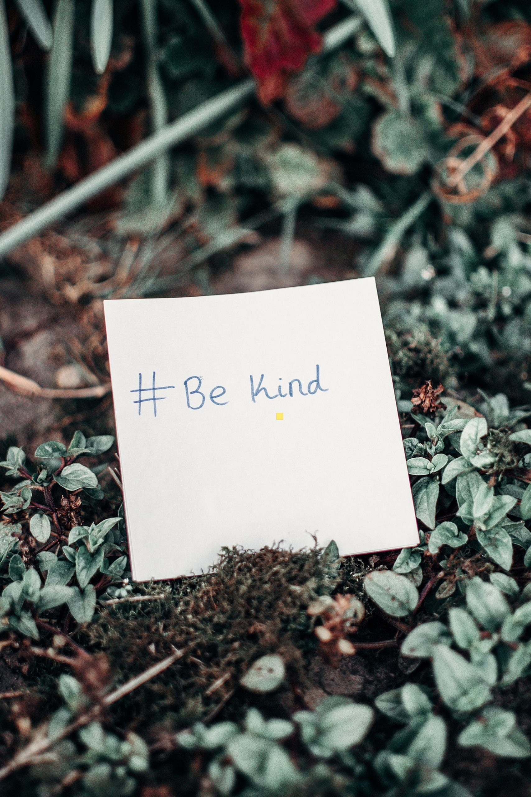 #289 Happiness – The Ripple Effects of Kindness