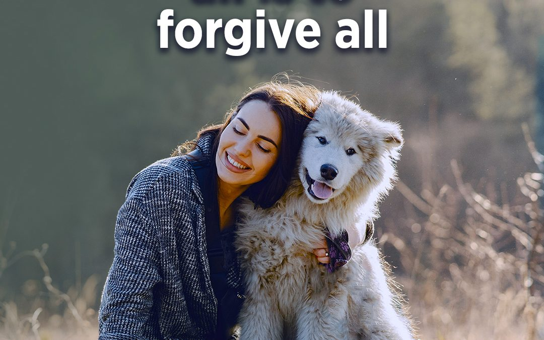 #339 Happiness – To Understand All Is To Forgive All
